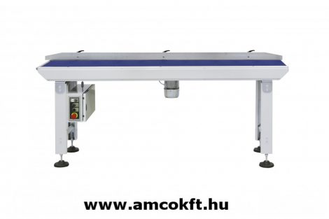 SMIPACK GH2000/400  Infeed Conveyor